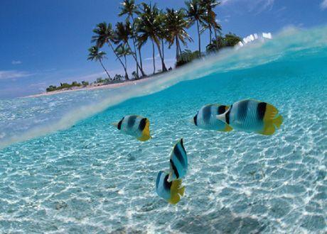 manzanillo, colima | BLOG OCV Manzanillo | Colima, de los destinos de sol y playa más ...
