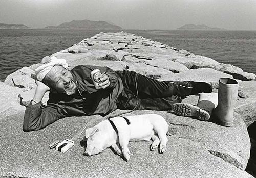 Toshiteru Yamaji: Pig and Papa