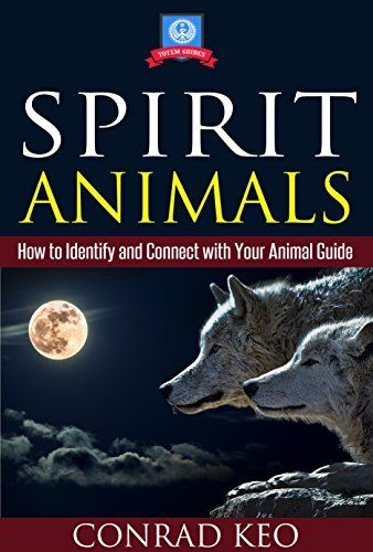 how to connect with animal spirit guide