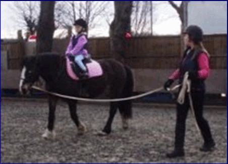Horseback Riding Activity | Girls Summer Horse Camps ...