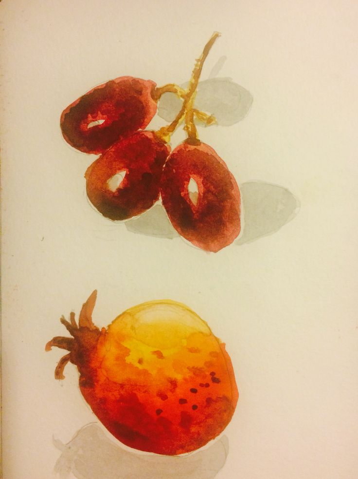 Fruits - watercolor