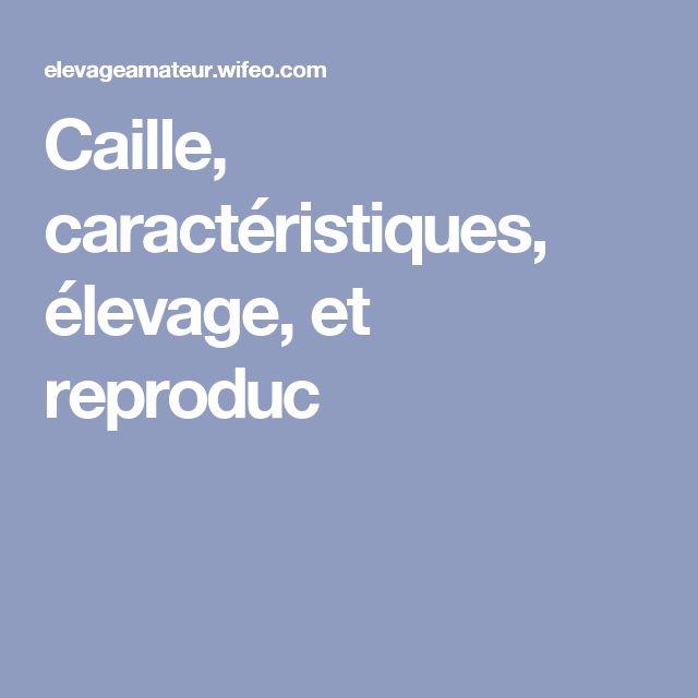 Caille, caractéristiques, élevage, et reproduc