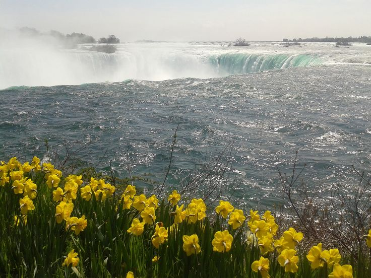 Another picture of Niagara Falls.