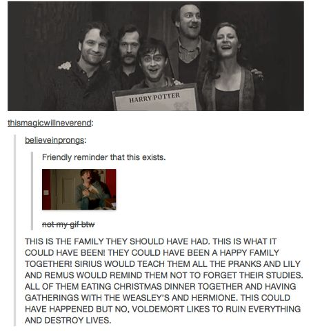What might have been. I know I've pinned it before, but I'm doing it again. I like to imagine, had things been different and Voldemort not gone all bat shit crazy, that Harry would have a sibling or two. And maybe Sirius would have a kid, although I doubt he'd settle enough to be married for long. Maybe Lupin and Tonks would have been together for a few years by this point, and maybe they'd have a few kids too. Their family should be a lot bigger.