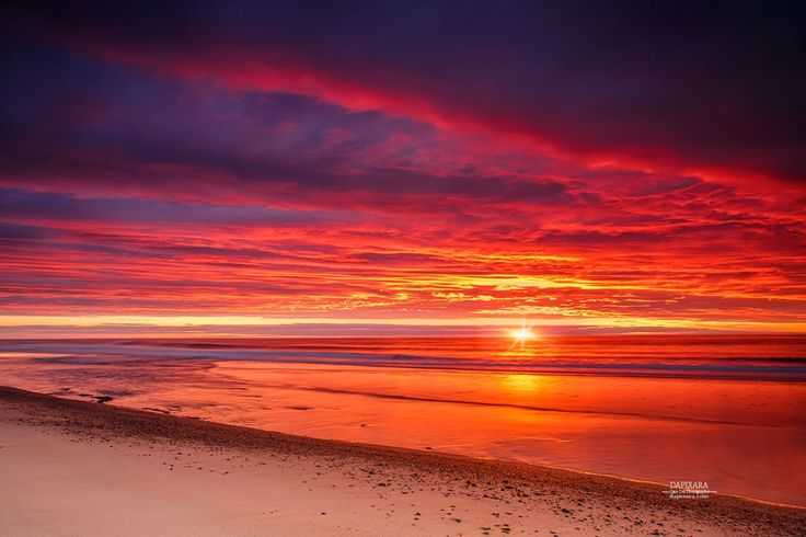 Orleans, Massachusetts. Wicked sunrise today over Nauset Beach in Orleans Cape Cod. Photo by Dapixara