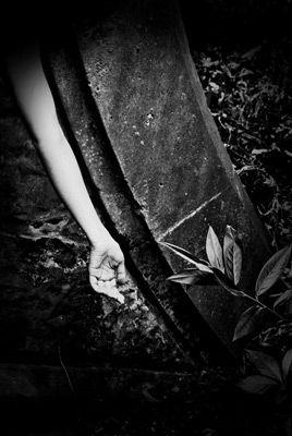 Black line - Maura Sullivan
