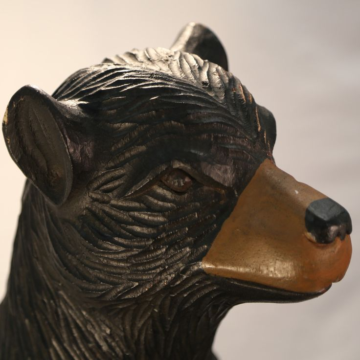 Big Black Bear with Gold Snout