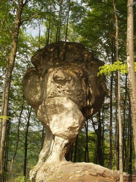 Nová boulderingová oblas? 'Stratený budzogáň' - climb.sk/