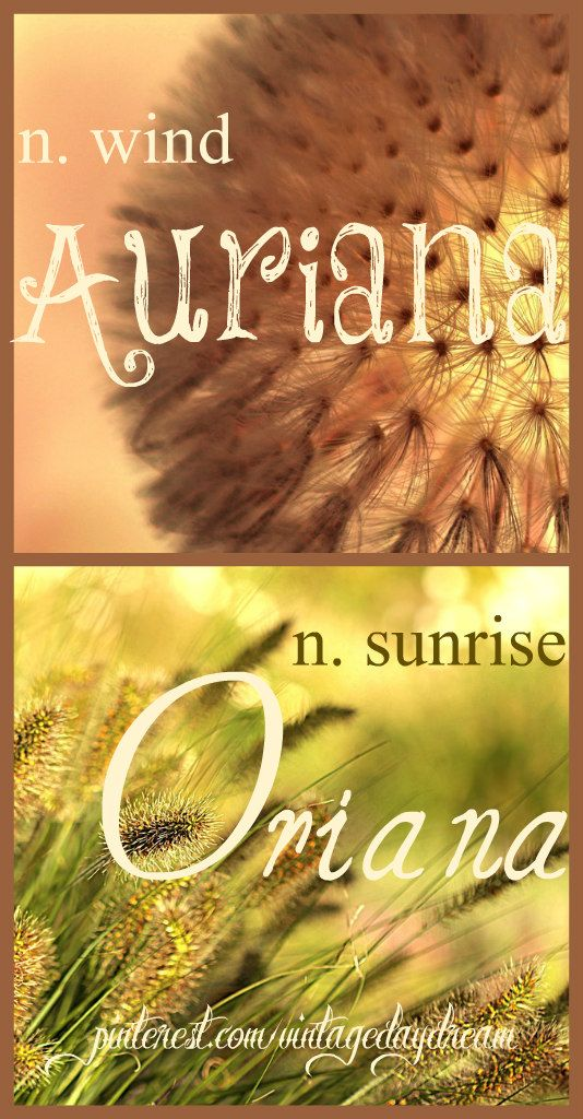 Baby Girl Name(s): Auriana and Oriana. Meaning: Wind, and Sunrise. Origin: Latin. https://www.pinterest.com/vintagedaydream/baby-names/