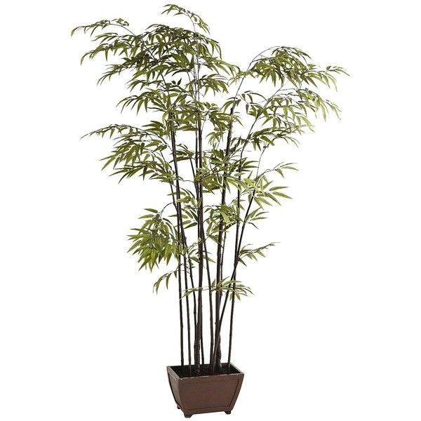 Pier 1 imports green faux bamboo tree 250 liked on for Faux bambou plante