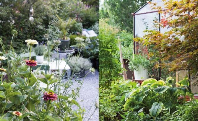 charlotte anderssons trädgård i sundsvall
