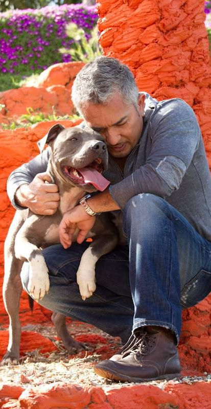 Cesar Millan with Jr.