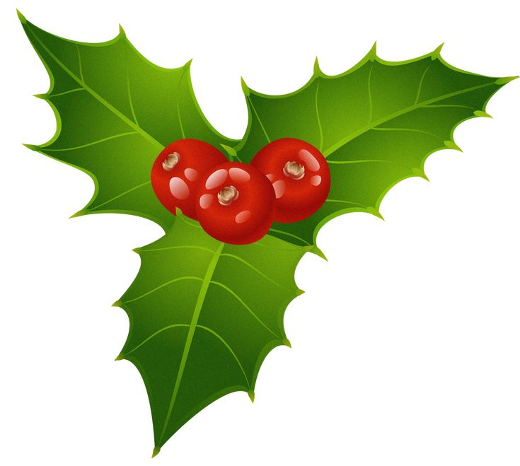 free xmas clipart holly - photo #44