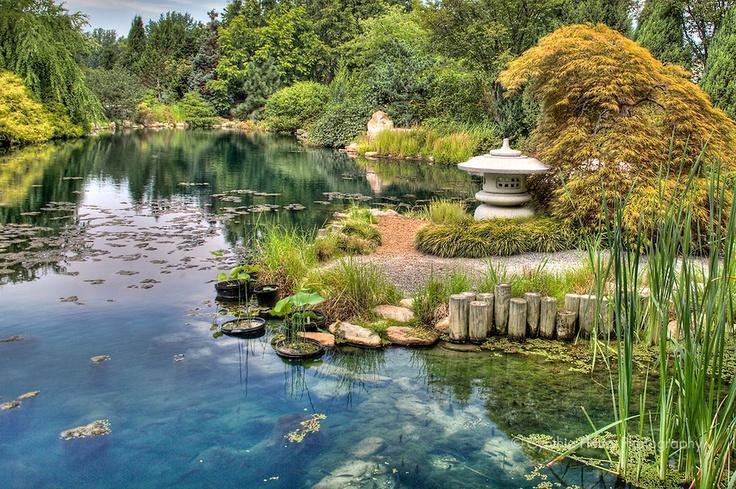 Ginter Botanical Garden, Richmond, Va