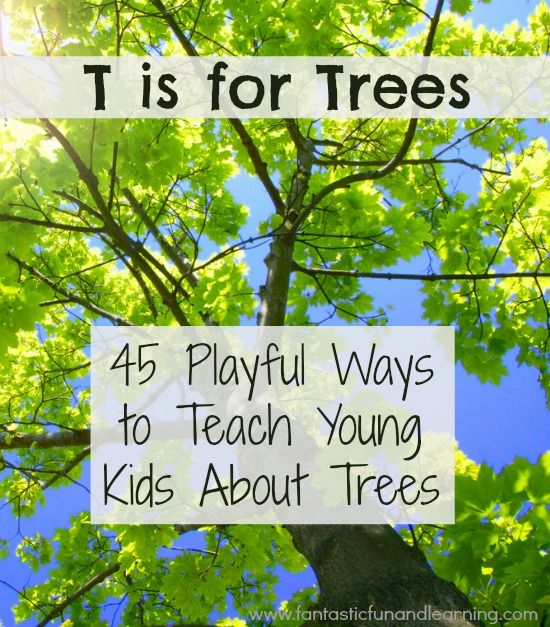 45 Playful Ways to Teach Young Kids About Trees...science investigations, literacy and math activities, book-related projects, and many terrific crafts and paintings!