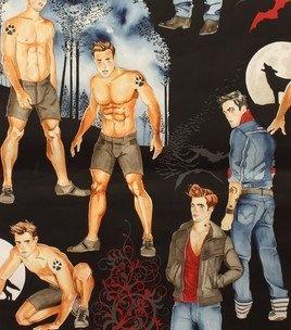 Twilight Movie Werewolf Vampire Pin Up Men Halloween Fabric Alexander Henry BTY by Alexander Henry, http://www.amazon.com/dp/B00A4MUVU8/ref=cm_sw_r_pi_dp_RYDNqb126KCVG