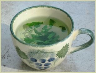 This is a picture of parsley tea. You can use fresh or dried basil, though fresh is definitely better!     http://www.bespokespices.com/parsley-tea.html