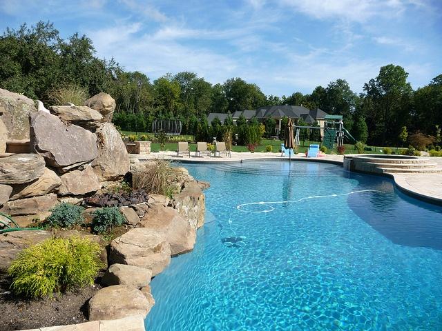 270 best Freeform Pool Designs images on Pinterest | Backyard ...