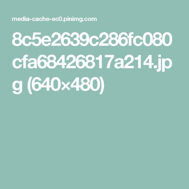 8c5e2639c286fc080cfa68426817a214.jpg (640×480)