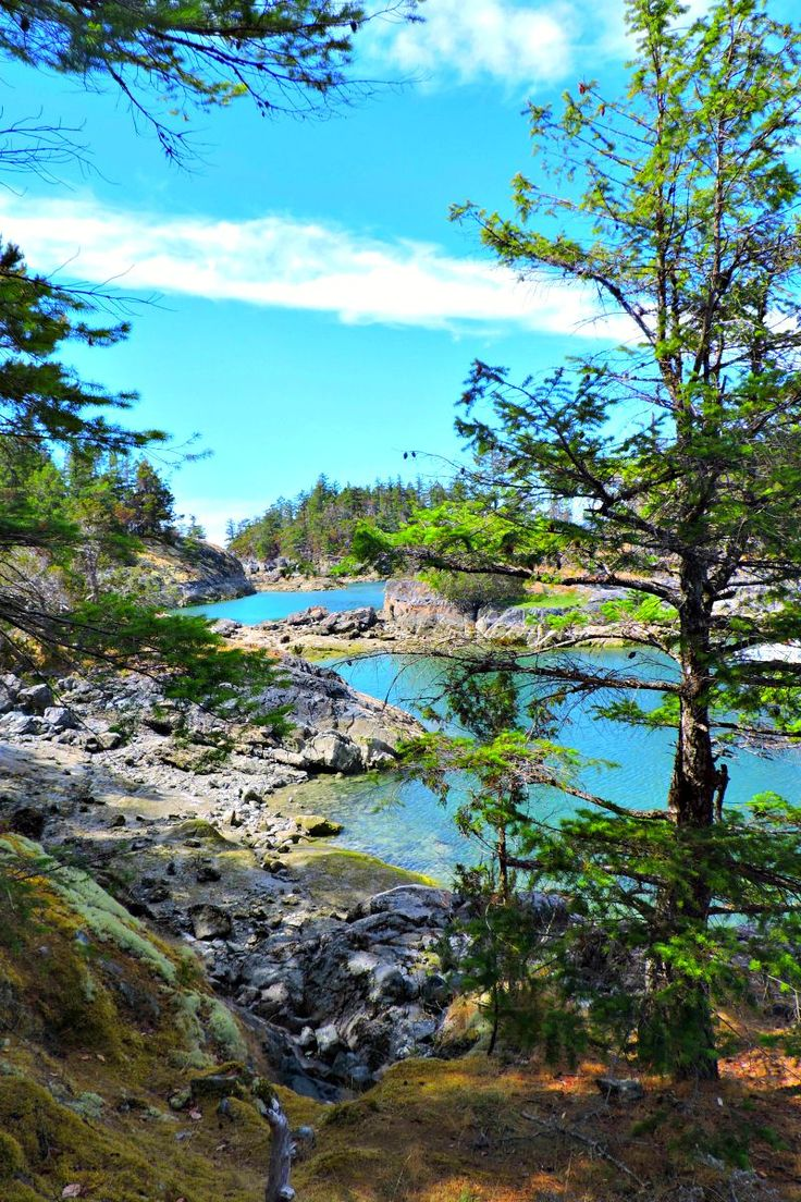 Smugglers Cove is a hidden gem on the Sunshine Coast of B.C. Two Scots Abroad break down the costs for one month on the Coast in their monthly travel budget #6 - Canada