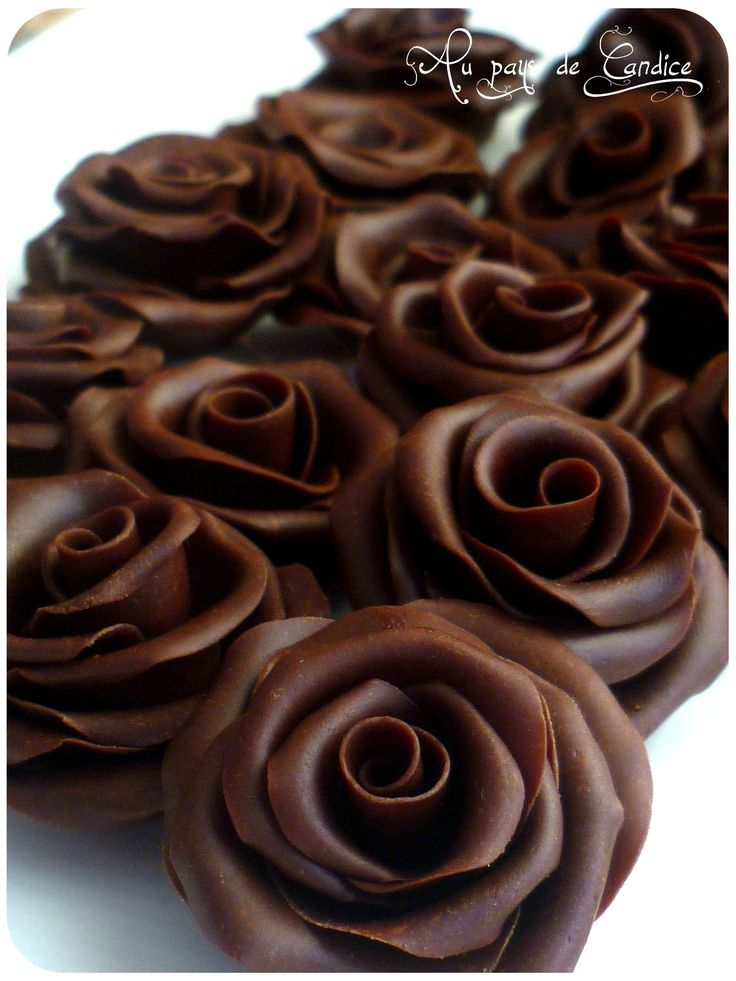 Chocolate roses. http://www.annabelchaffer.com/categories/Dining-Accessories/ #chocolates #sweet #yummy #delicious #food #chocolaterecipes #choco                                                                                                                                                                                 Más