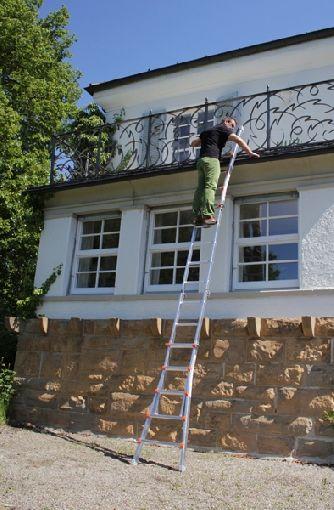 Homeplaza - Hoch hinaus in Garten und Haus mit einer variablen Teleskopleiter - Beste Aufstiegsmöglichkeiten