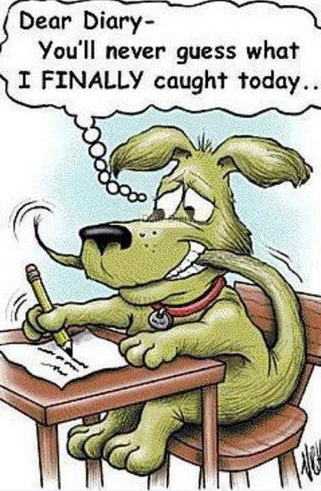 ...Guess what he caught...???... Dog Humor