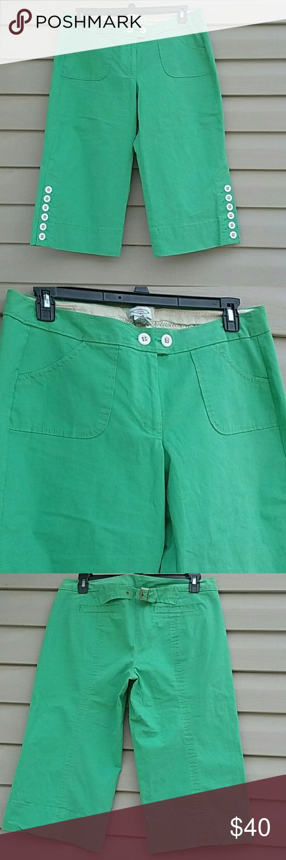 Anthro Sitwell capri pants Sitwell wide leg capri from Anthropologie,  very cute, worn once still in like new condition size 14 mint green color Anthropologie Pants Capris
