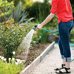 5 simple water-saving steps