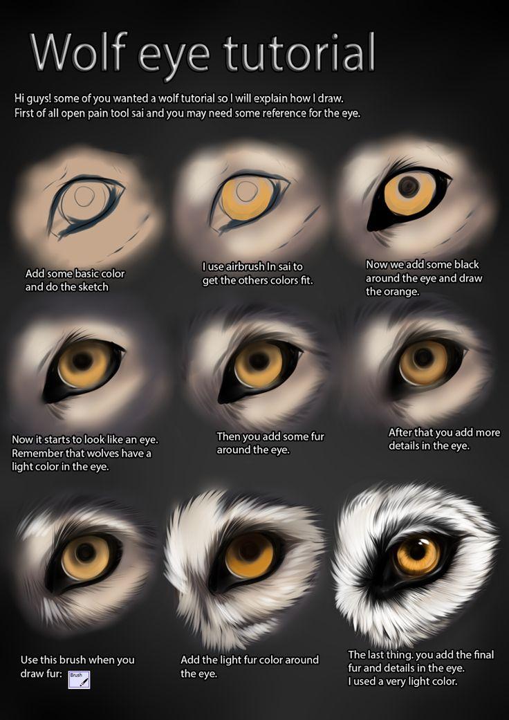 Wolf eye tutorial by *TheMysticWolf on deviantART