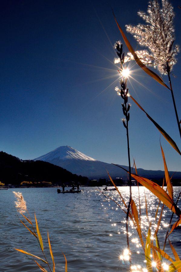 富士山 Mount Fuji