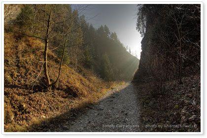 Autumn hiking trail in the Pieniny Mountains. #Poland