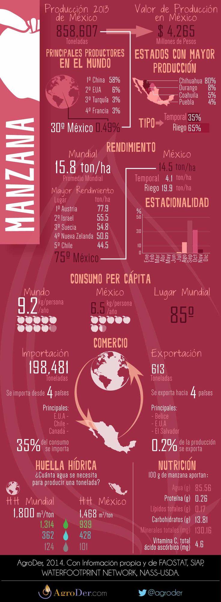 Infografía - Manzana en México, 2013.