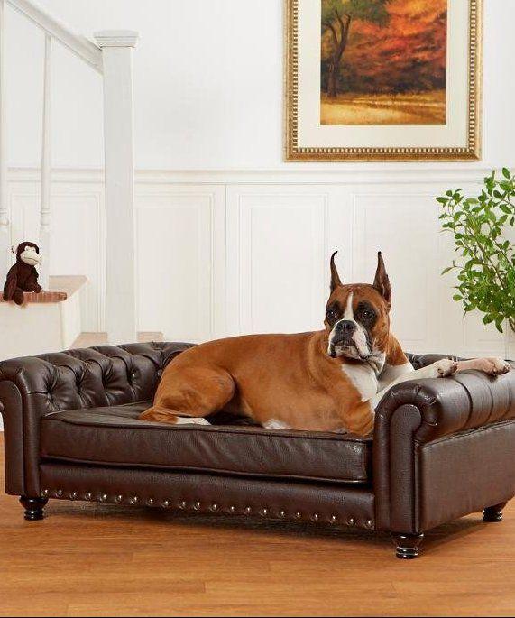 Wentworth Tufted Dog Sofa Frontgate Tufted Dog Bed Dog Sofa