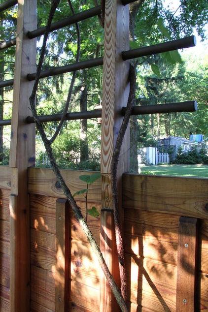 Best 25 Metal Arbor Ideas On Pinterest Metal Pergola