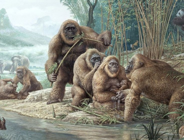 extinct animals in the last 100000 years