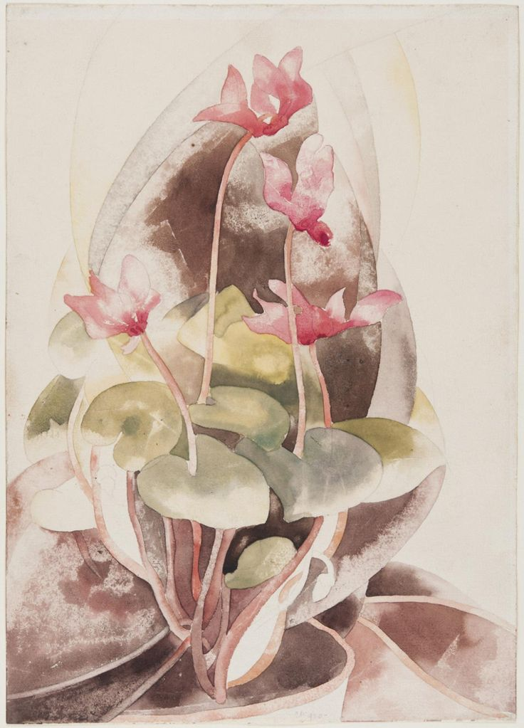Charles Demuth: Cyclamen. Watercolor. Philadelphia Museum of Art