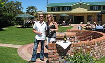Wine Tasting Tour page for the Grape Escape half day wine tasting tour of Hawke's Bay departing Napier $80
