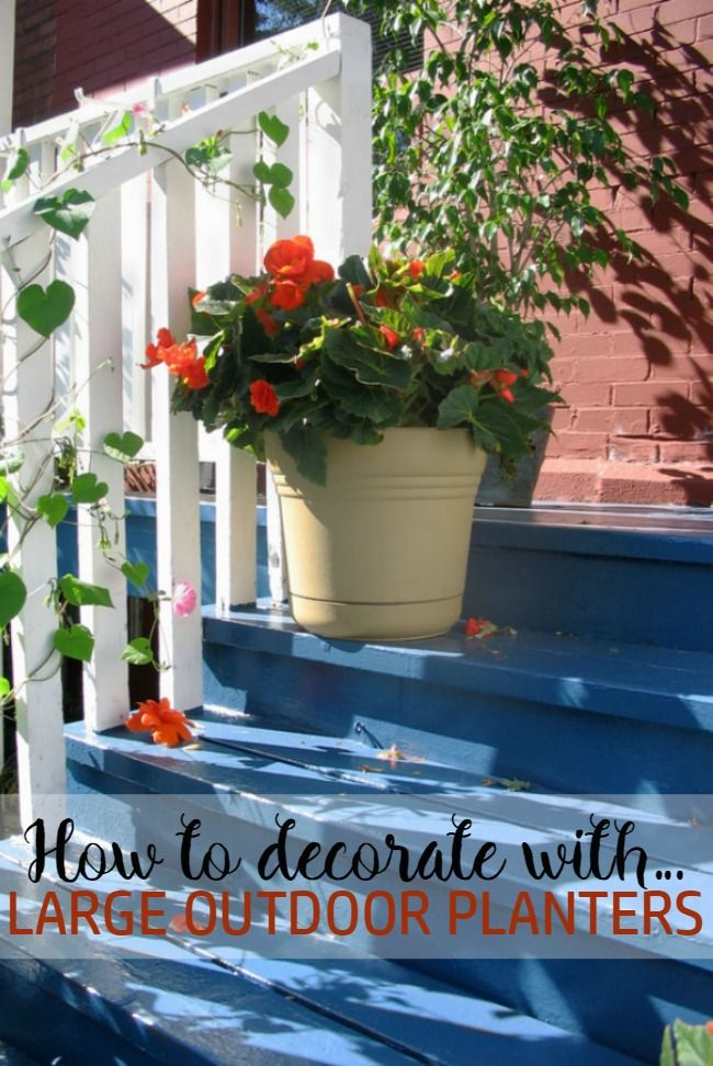 Want to learn how to decorate your patio or deck with large outdoor planters   Check. 25  unique Large outdoor planters ideas on Pinterest   Garden