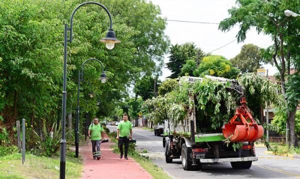 El Municipio continúa realizando trabajos de poda correctiva en San Fernando