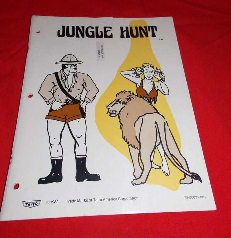 In The Hunt Arcade manual
