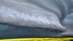 Se estima que en tres meses llegará el fenómeno climático El Niño