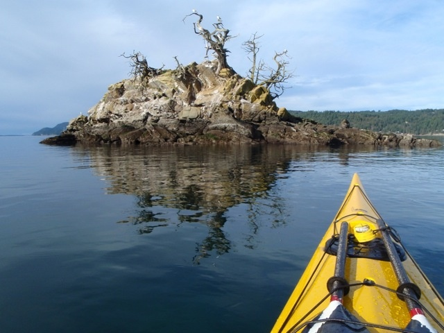 Balingal Islets, galiano, hang-out for Pelagic Cormorants, and home to Double-Crested Cormorants in the 1990s