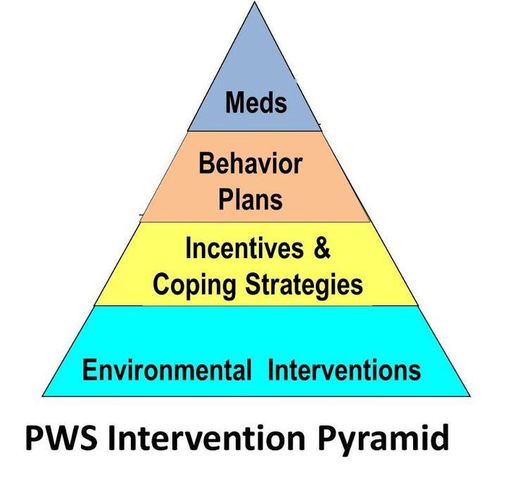 Prader-Willi intervention pyramid