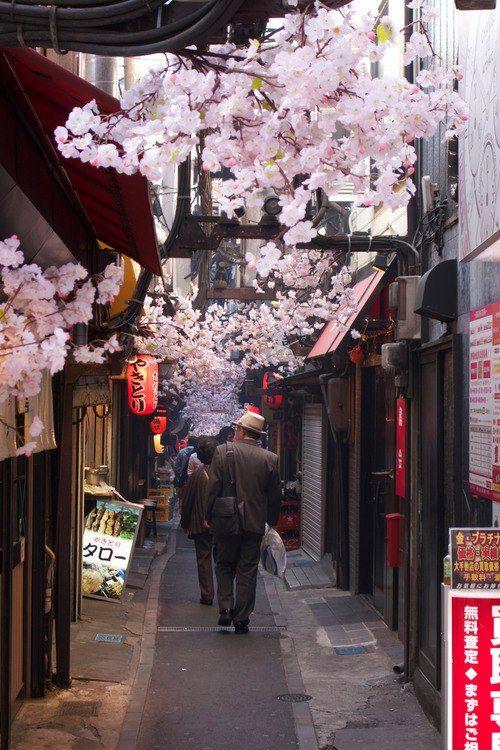 Back Street of Shinjuku, Tokyo, Japan