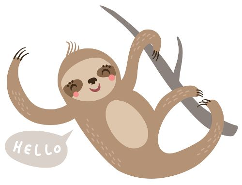 Best 25+ Pictures of sloths ideas on Pinterest | Baby ...