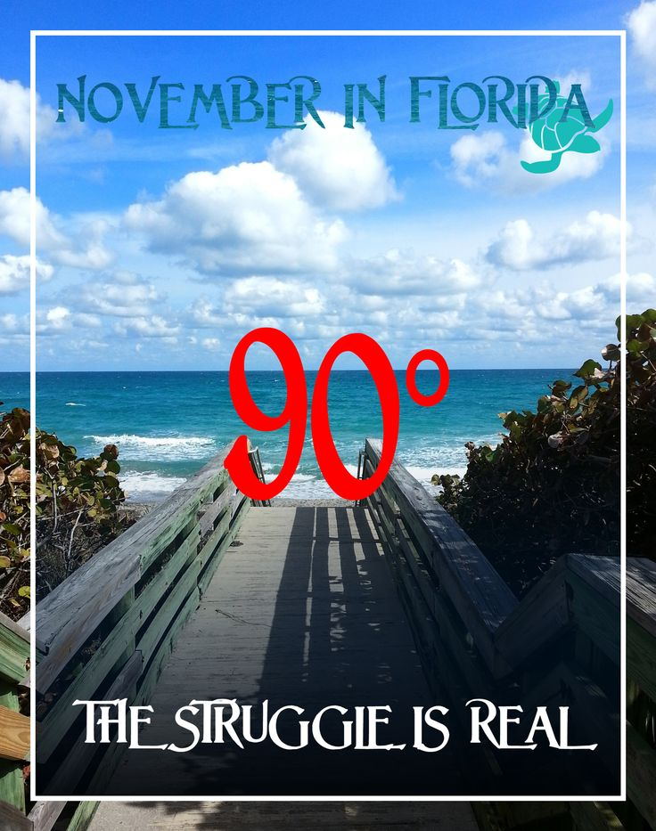 Winter in FL – The Struggle is real ☀  pinned by http://www.wfpblogs.com/category/florida-memes/