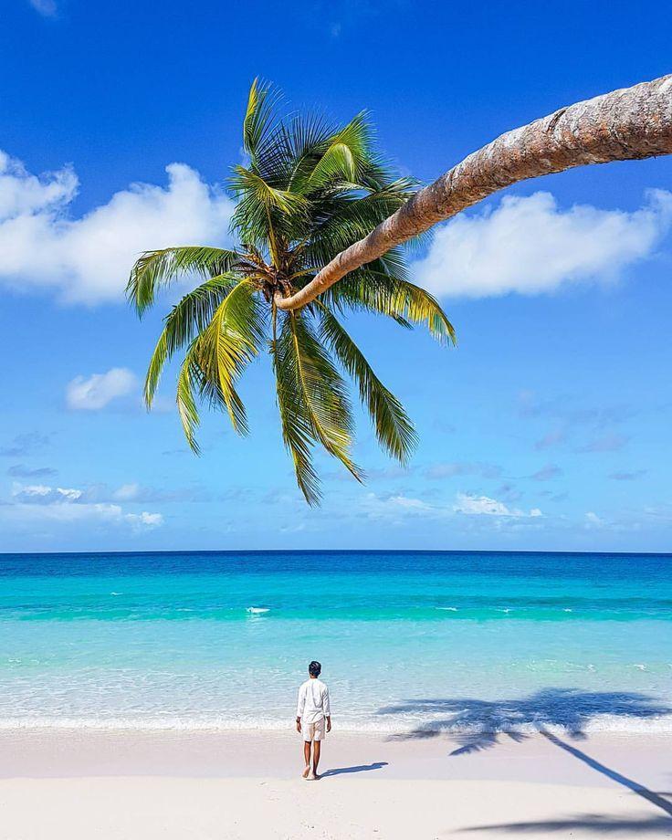 Yakin nggak tergoda untuk ke sini? . Ini adalah #PantaiMadwaer di Kecamatan Kei kecil Barat Provinsi Maluku. Ibarat manusia Pantai Madwaer bisa digolongkan ke dalam orang-orang yang pintar menggoda dan merayu. Pasir putihnya yang lembut dan luas seakan mengajakmu untuk duduk-duduk nyantai dan menikmati birunya air laut. Ombaknya yang berdebur seperti alunan musik seakan mengisyaratkan seseorang yang pintar bermain musik dan romantis abis! . Belum lagi ditambah jajaran pohon kelapa yang akan…