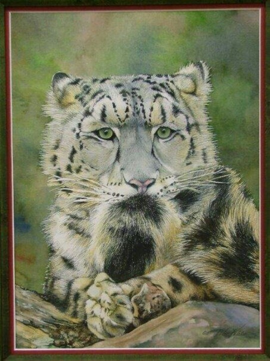 Snow leopard watercolor