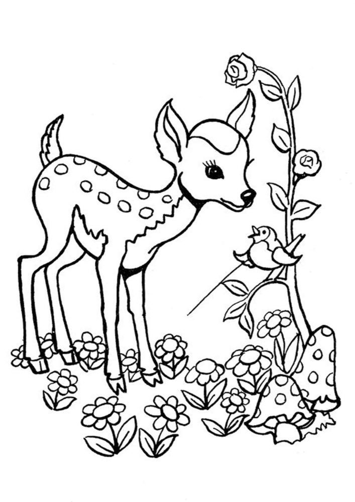 Free Easy To Print Deer Coloring Pages In 2021 Deer Coloring Pages Horse Coloring Pages Animal Coloring Pages